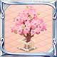 桃宴の左近桜.PNG